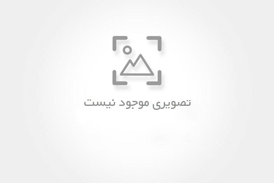 فروش چوب روسی – استان تهران